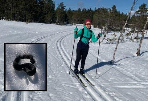 HOGGORM: Skigåere i Vestskauen møtte hoggorm i løypa (innfelt) onsdag. På bildet er Maren Skarra