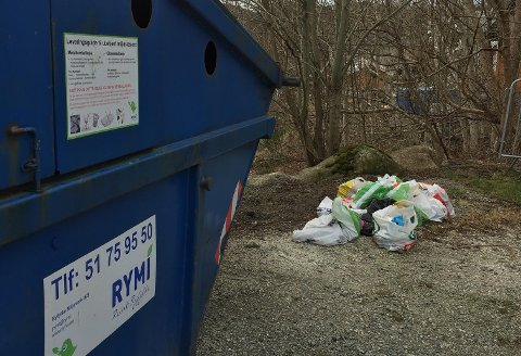 FORSØPLING: Fleire posar med forskjellig søppel ligg slengt ved cointaineren for glas- og metallinnsamling i Dalavegen.