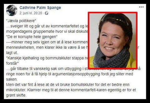 KOMMENTARFELT: Politiker Cathrine Palme Spange langer ut i et Facebook-innlegg mot nettroll.