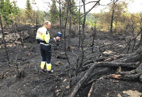 Skogbrann: Slik så skogsområdet mellom Prestevegen og Vegår ut etter brannen 31. juli. Dette var en av i alt 27 skogsbranner som Østre Agder Brannvesen rykket ut til i juli. Arkivfoto