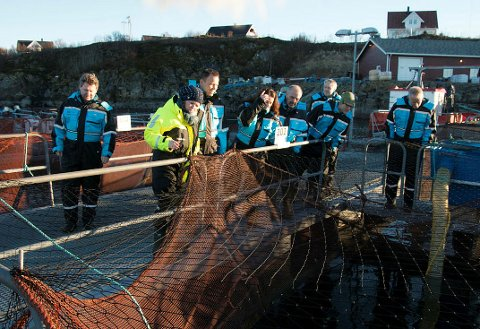 Forsøksstasjonen til bedriften LetSea AS på Dønna, bedriften har alle fiskefôrprodusentene og storparten av oppdrettsnæringen som kunder.
