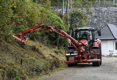 Det vil skje en endring i hvordan det ser ut langs alle de kommunale veiene i Bergen fra og med neste år. Fra å fjerne så å si all vegetasjon langs veiene, skal kommunen nå ta hensyn til insektene.