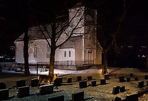 Hjort Sande kyrkjegard