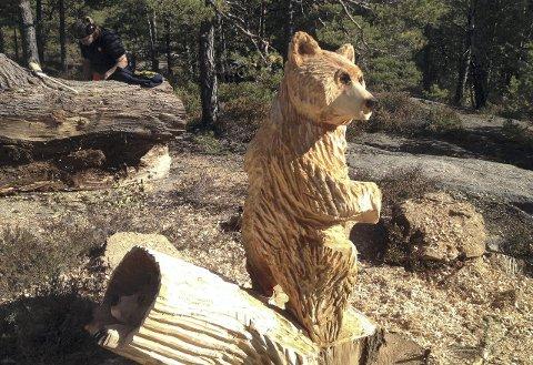 ROLIG BAMSE: En fredelig Bjørndalen-bjørn med en bjørnekamerat tittende ut av en stokk.