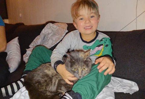 UVANLIG AKSJON: 6 år gamle Herman Johan Blien måtte ut på en uvanlig aksjon da katten Pusi (2) hadde gjemt seg i kjøkkenvifta.