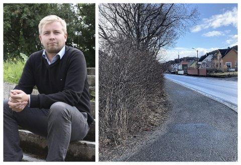 Eirik Berglund fortviler over at Alstahaug kommune har pålagt han å kutte hekken rundt hans bolig i Novikveien. Tross fire forslag til løsning firer ikke kommunen. - Ved å dytte alt av kostnad og arbeid på meg som innbygger, ser det ut som at de er handlekraftige, sier han fortvilt.