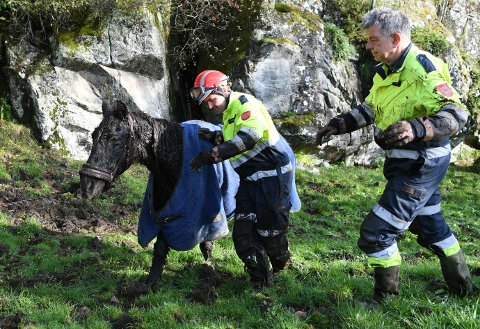 «Gutten» (32) lå sunket ned i gjørme tirsdag ettermiddag, og måtte reddes opp av brannvesenet.