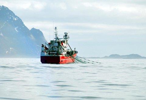 HENSTILLER: Fiskeridirektoratet henstiller nå garn- og linefiskerne om å ta hensyn til snurevadbåtene