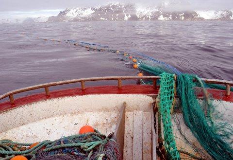 BEDRE PLASS: Snurrevadflåten får nå bedre plass på feltet utenfor Henningsvær.