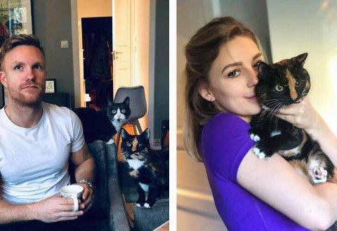 NYE EIERE: Lars Gimmestad og Sofie Staal dro til Moss for å hente kattene Toska (hvit og svart) og Ronja (brun og svart).