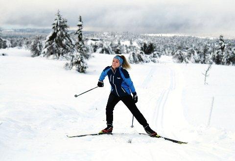 Nora Aanekre, Sør-Fron
