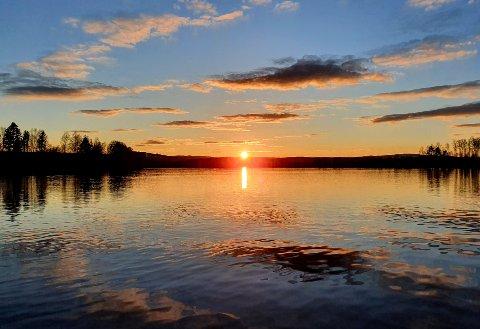 FLOTT: Det er flotte opplevelser å få  ute i Finnskog-naturen.
