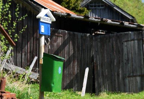 Tur: Årets utgave av Snåsatur har snart tangert rekorden fra i fjor med nesten 600 deltagere.