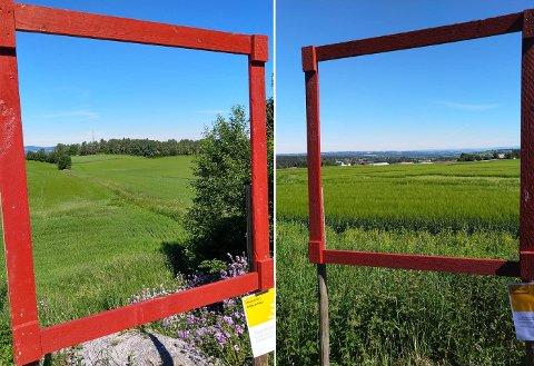 RAMMER INN LANDSKAPET: Målet med kampanjen er blant annet å vise at bonden står bak mye av kulturlandskapet turistene passerer.