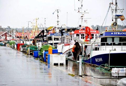 Landligge for fiskeflåten i Utgårdskilen.