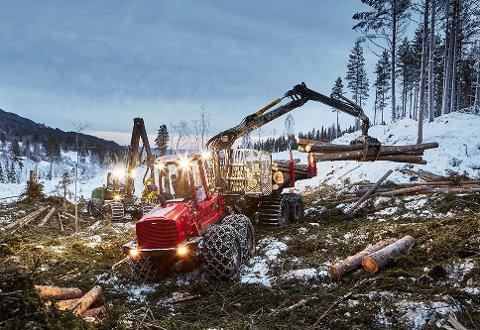 TØFFE TAK: Tunge trær transporteres til tømmerindustrien