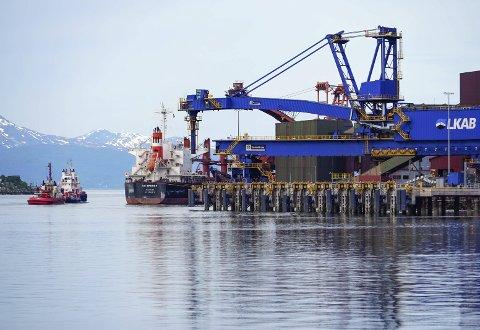 LITT SMÅTT: Den nye malmkaia ble bestilt for skip opp til 180.000 tonn. Men fartøyene som anløper Narvik blir stadig større. Så store at de er i ferd med å vokse fra nykaia allerede før LKAB har overtatt den. Dermed kan den gamle kai 5 (bak), bli brukt hyppigere enn antatt. Foto: Fritz Hansen