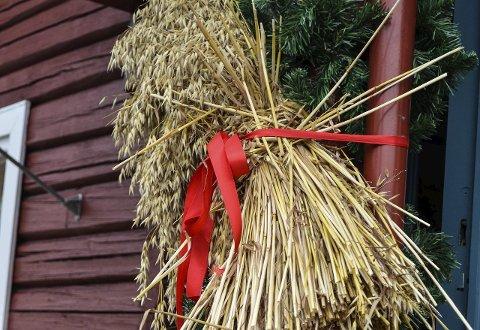 JULENEK: Tørkesommer betyr at juletradisjon blir rammet i Jevnaker.