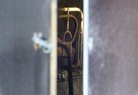 DØDE PÅ BÅS: De drøyt 70 kyrne og kalvene som ble funnet døde i Fosnes har sannsynligvis sultet ihjel. FOTO: BJØRN TORE NESS