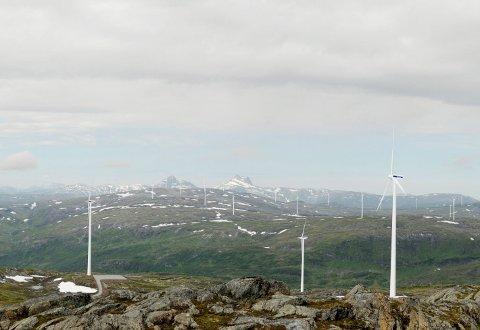 TETT I TETT: Landskapet vest for Mosjøen vil bli påvirket av vindmøllene.