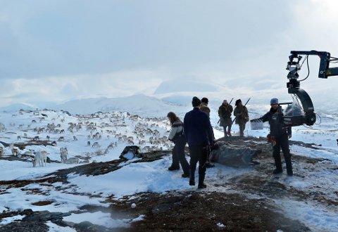 OPPTAK: Rundt tusen reinsdyr inngår i en av scenene som ble innspilt i Mauken sist uke.