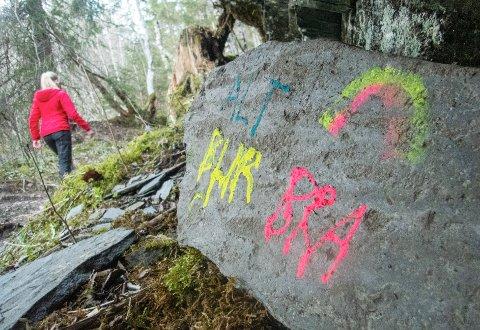 FÅ TILFELLER: Sammenliknet med andre kommuner i nærheten har Larvik hatt få koronatilfeller, selv om man søndag fikk nummer 174.
