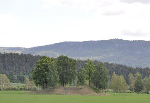 HISTORISK: Ett av mange spor etter vikingene er gravhaugen ved Stein gård og Steinssletta.
