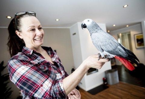 Jakopapegøyer kan leve til de er 50, så Hilde Fjærgaard regner med at hun må ha med seg Pia (15) på gamlehjemmet. Når matmor prater i telefonen, kan Pia bli rasende for at noen andre får oppmerksomheten og kan finne på å bite til. ALLE FOTO: TOM GUSTAVSEN