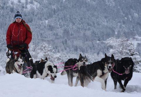 GLEDER SEG: Ingrid Andreassen er klar for Femundløpet, og onsdag er hun og hundene og handlerne allerede på vei mot Røros.