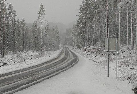 MAI-SNØ: Bildet er tatt på FV37 mot Bolkesjø og mot Kongsberg, rett ved fylkesdelet mot Viken klokken 06.15 onsdag morgen.