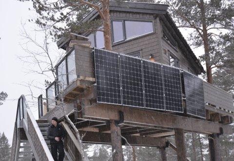 Ikke ekorn: Du behøver ikke være ekorn for å komme deg opp i tretopphytta til Fosstopp AS. Hytta er utstyrt med s to solide trapper. Legg merke til solcellepanelet.