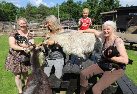 DYRISK: Anniken Haldorsen (27), Toril Haldorsen (55), Inger Dyrset (56) og Tobias Dyrset (8) ser frem til å ta imot besøk på gården igjen.