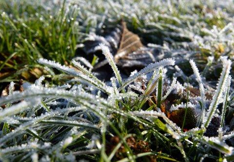 VÆRSKIFTE: For ikke lenge siden hadde vi 20 grader og sommer. TIl helgen meldes det betydelig lavere temperaturer.