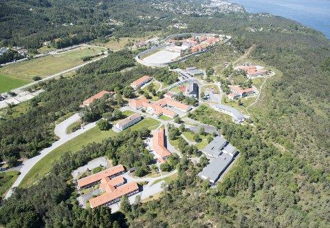 HAR FUNNET TOMT: Her mellom Bergen fengsel, innenfor den hjerteformede muren, og Bjørgvin fengsel, til høyre i bildet, vil Kriminalomsorgen bygge kvinnefengsel. Foto: Arne Ristesund