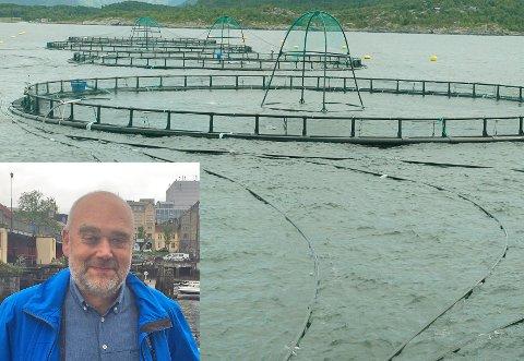 Johnny Kjempenes i Havbrukspartner er ansvarleg for søknaden. Han representerer tre små oppdrettselskap frå Austevoll som samarbeider om etableringa.