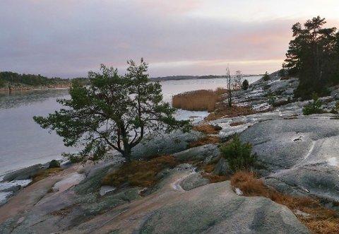 Kaldere: Det skal være minusgrader hele uken. Men det er flott å gå tur langs kysten også i vintervær, her fra Pernestangen.