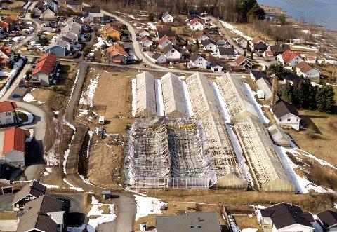 SOLGT: Selskapet Bondelia AS med tre tomter er solgt. Gartneriet vil snart bli revet.