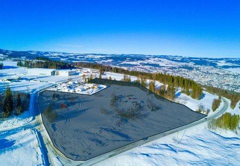 ØSTBY TERRASSE: Dronebildet viser det markerte utbyggingsområdet etter at det er blitt avskoget.