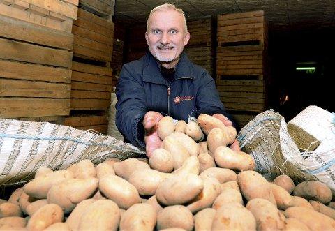 POTETER: Stig Haarseth fra Rendalen er en av de mest erfarne potetbøndene i Norge. – Du må leve og ånde for dette, mener han.