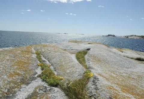 Magisk: Utsikten på Folehavna kan ta pusten fra de fleste. Her kan man skue utover fjorden mens lyden av bølgeskvulp gir en sinnsro av de sjeldne. Til høyre i bildet kan du skimte restene av de velkjente bunkerne. Alle foto: hanne bergby olsen.