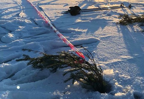 MERKET: Sperrebåndet og buskene markerer skillet mellom mer trygg og usikker is.