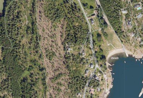 TØMMERVEI: Bildet viser Nestvikveien. Skogholtet til venstre er regulert til landbruks-, natur- og friluftsformål.
