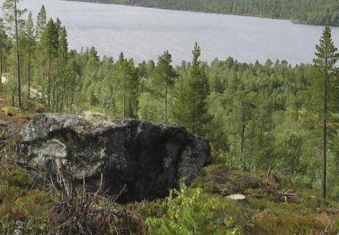 Nye tomter: SK-Bygg jobber med å klargjøre de første tomtene i Kviknedølsåsen med utsikt mot Savalsjøen.