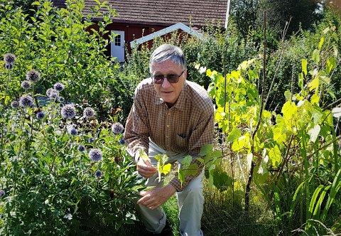 ØKONOMI: Gunnar Bengtsson mener Bane NOR og Jernbaneverket kun ser på hva en ny Østre linje og et hensettingsanlegg vil koste, uten å å se på ikke-prissatte verdier som matjord, kulturminner og natur.