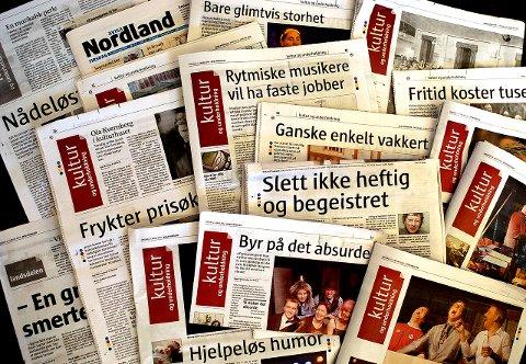 Vaktbikkje?: Media i Bodø har opptrådt mer som skjødehund enn vaktbikkje etter påstanden om korrupsjon i byen.