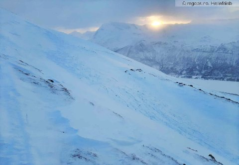 Torsdag ble dette skredet observert på Fargefjellet over Fagerned i Ramfjord i Tromsø kommunen. Foto: Hellefriisb/RegObs