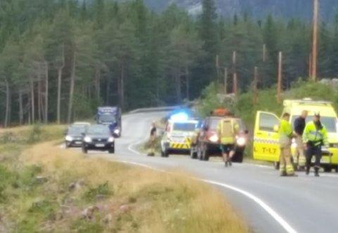 Minibuss har kjørt av vegen på E16 et par kilometer nord for Ryfoss.