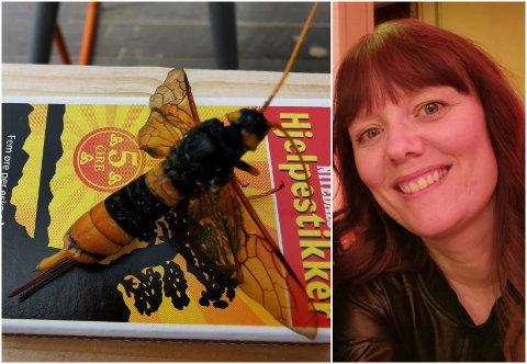 STORT INSEKT: Insektet er større enn en vanlig veps. Ser du hva det er?