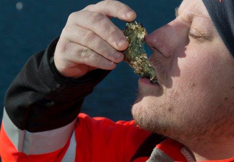 - Bedre enn østers fra Frankrike, sier Robin Kjelseth i Tenvik.