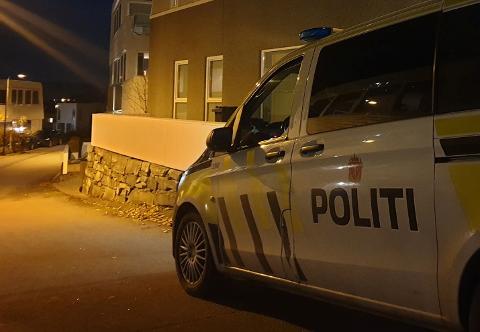 For andre gang på under ett år har en Skadberg-mann blitt arrestert for befatning med eksplosiver.